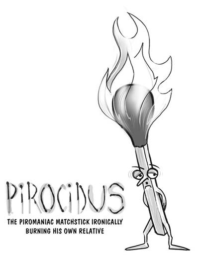 Pirocidus